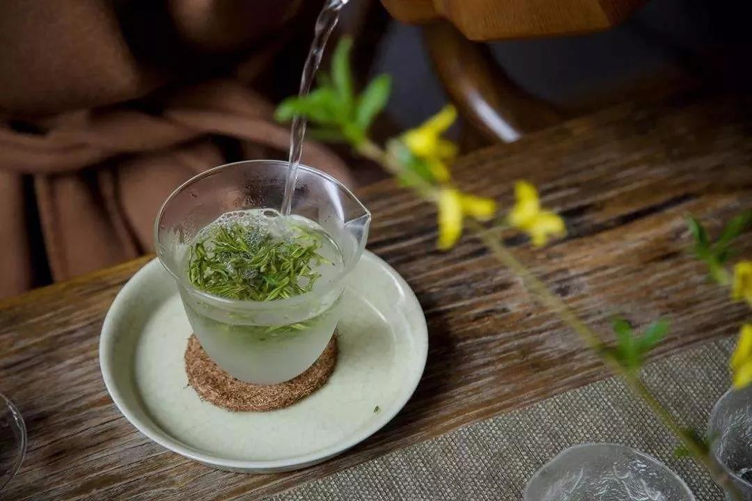 日照绿茶口粮茶怎么买