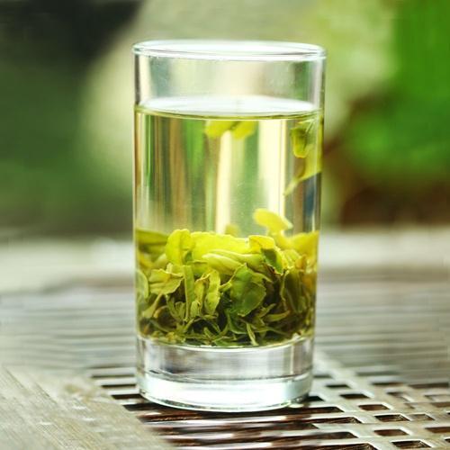 日照绿茶最新价格